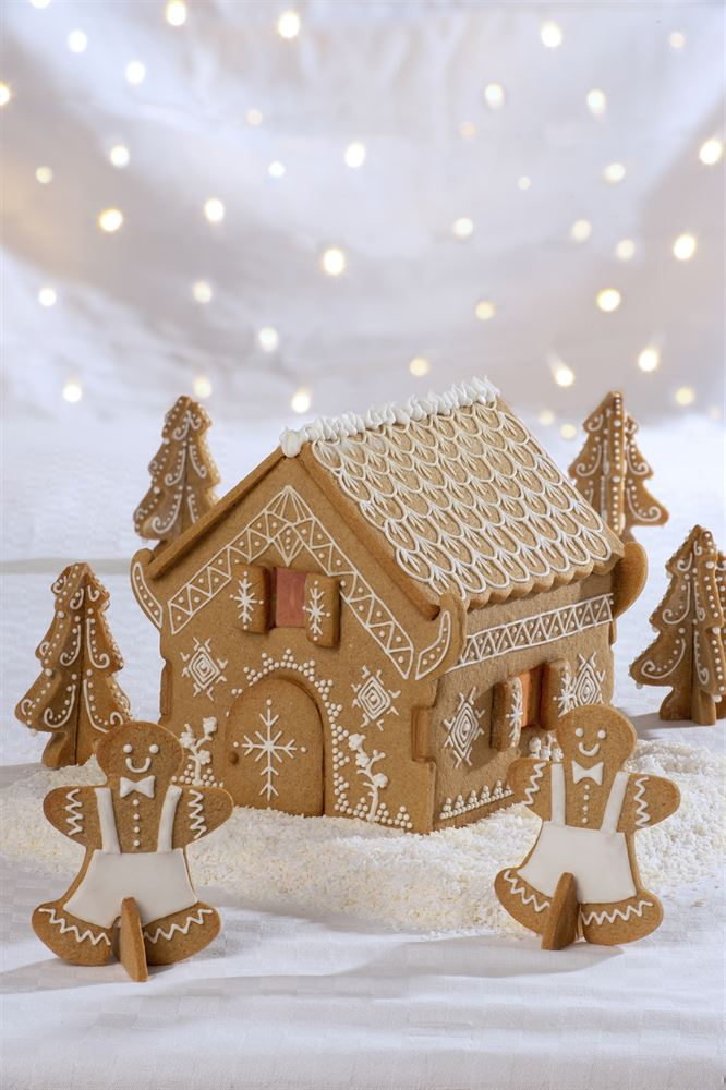 GINGERBREAD HOUSE BISCUIT SET 20PC