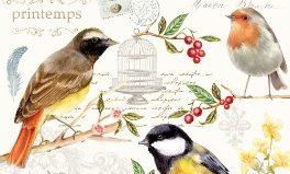 Songbird Ranges